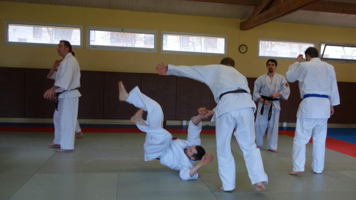 Nihon Taï Jutsu à Paris – 3 février 2013