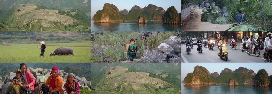 Fin du séjour au Vietnam – 3 novembre 2013