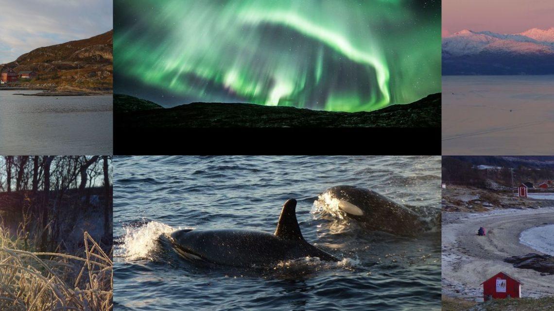 Aurores boréales à Tromso – 2 et 3 novembre 2016
